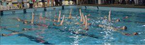 Lutra synchroonzwemmen spreekbeurt-2