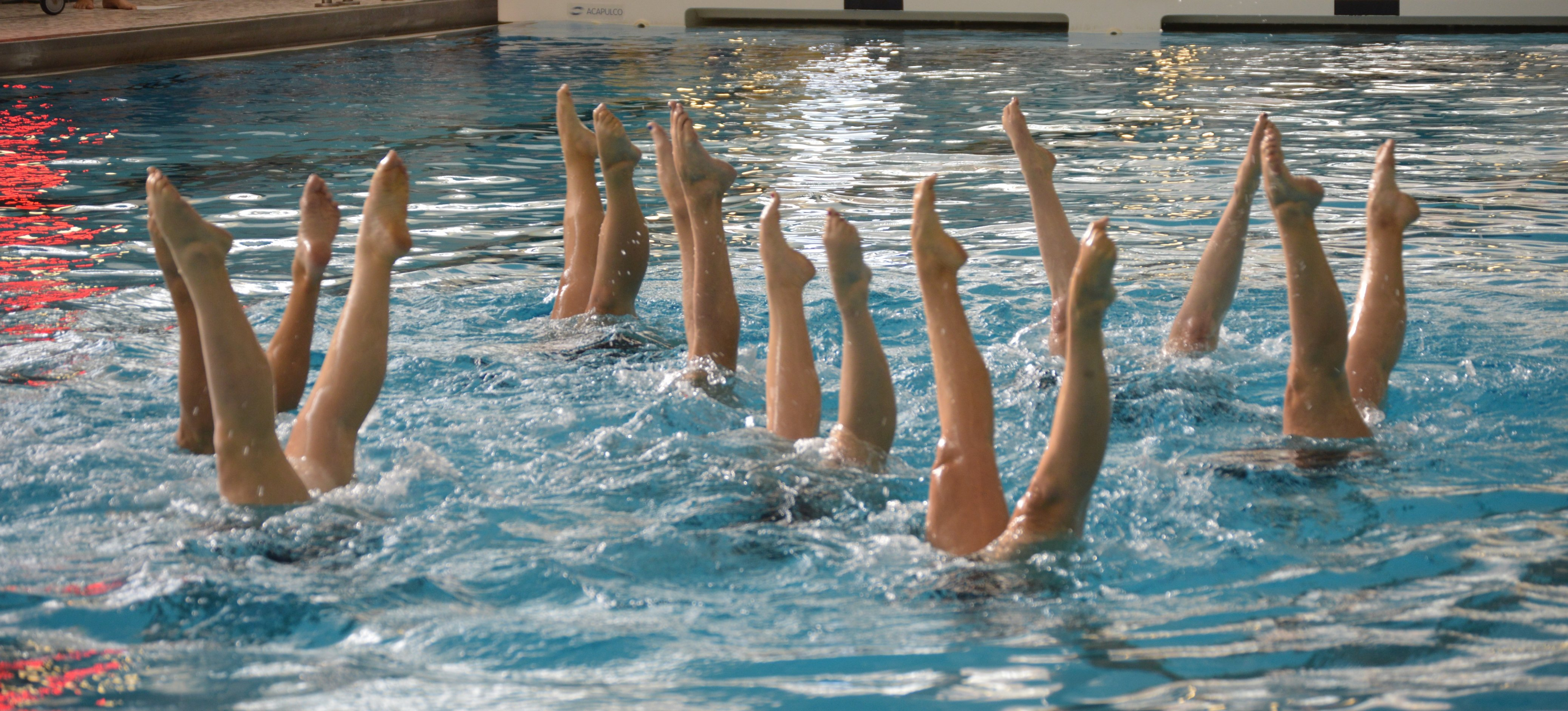 Lutra synchroonzwemmen spreekbeurt-3